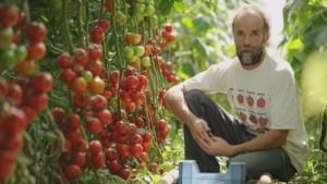 dagelijkse kost : Pommes d'Amour | klik op de afbeelding voor de reportage