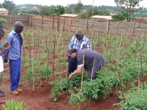 Als vrijwilliger in Malawi (januari 2016)